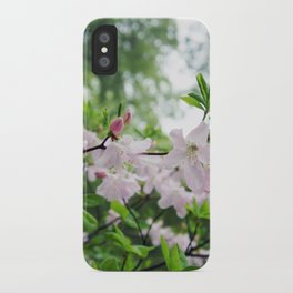 secret garden 14 iPhone Case