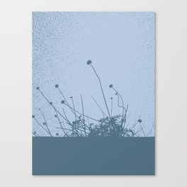 2d World Canvas Print