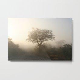 Misty Kruger Park Morning Metal Print
