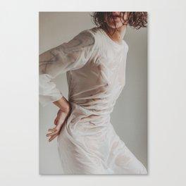 Moth 3 Canvas Print