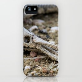 Texas Lake Monster iPhone Case