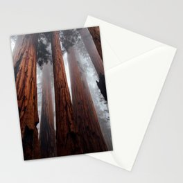 Woodley Forest Stationery Cards