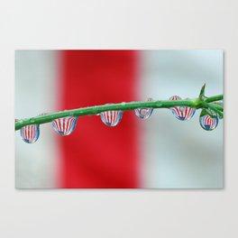 Flag bubbles Canvas Print
