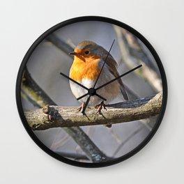Fluffy Robin Redbreast Wall Clock
