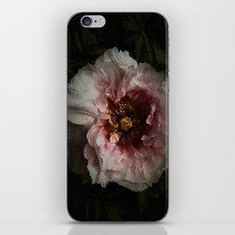 Peony 5 iPhone Skin