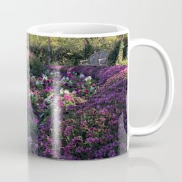 Texas Fall Coffee Mug