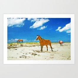 Wild Horses on Cumberland Island Art Print
