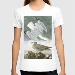 Seagulls Illustration - Birds in America T-shirt
