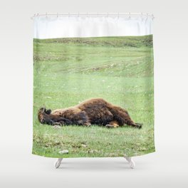 It's Been One of Those Days Shower Curtain