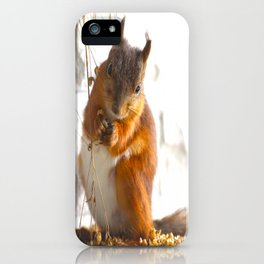 Mommy Squirrel  iPhone Case
