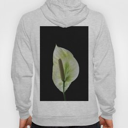 Peace Lily on Black #1 #floral #decor #art #society6 Hoody