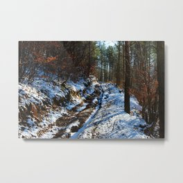 Forest road in winter Metal Print