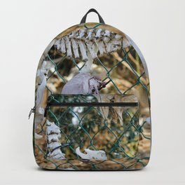 Trophy Backpack