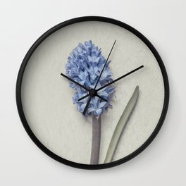One Light Blue Hyacinth Wall Clock