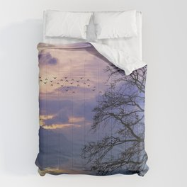 Lilac Sunset Comforters