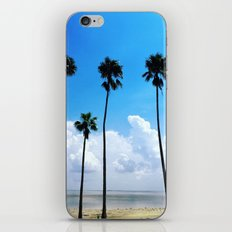 Congregation of Palms iPhone & iPod Skin