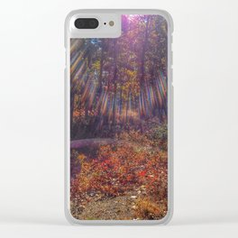 Pinelands Glimmer Clear iPhone Case