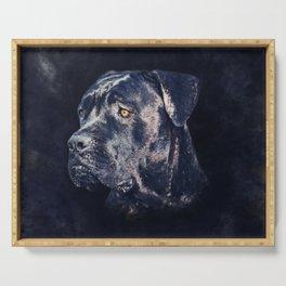 Cane Corso - Italian Mastiff Portrait Serving Tray
