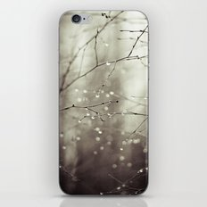 Colorless iPhone & iPod Skin