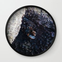 Between the Tides (Point Lobos) Wall Clock