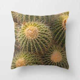 Desert Scene Throw Pillow