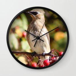 Cedar Waxwing in a Crab Apple Tree Wall Clock