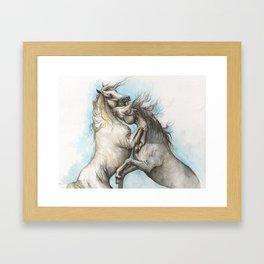 Fighting horses Framed Art Print