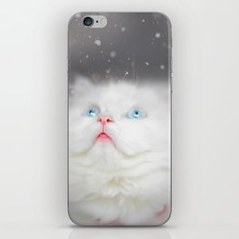 Kitten's First Snow iPhone Skin
