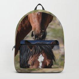 Wild_Horse 0174 - Nevada Backpack