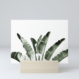Traveler palm Mini Art Print