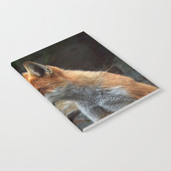 Fox renard 4 Notebook