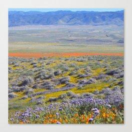 Flowering Fields Canvas Print