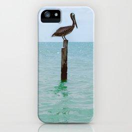 Pelican in Holbox beach iPhone Case