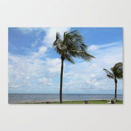 Let Rumors Fly Canvas Print