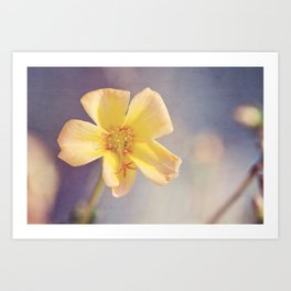A Little Yellow Flower Art Print