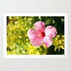 Hibiscus #2 Art Print