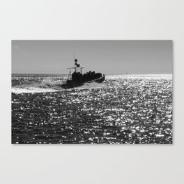 Search For Whales Canvas Print