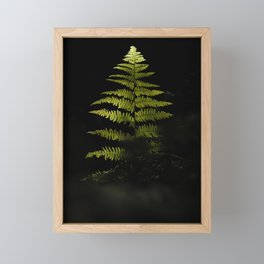 The Fern Framed Mini Art Print