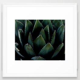 """""""Uncomfortable"""" Desert plants Framed Art Print"""