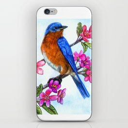 Bluebird and Apple Blossoms iPhone Skin