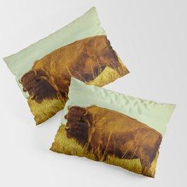 Vintage Bison - Buffalo on the Oklahoma Prairie Pillow Sham