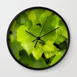 Green leaves with dew Wall Clock