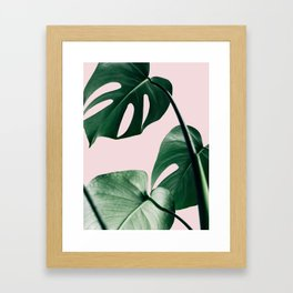 Plant, Green, Monstera, Leaf, Pink, Minimal, Trendy decor, Interior, Wall art, Photo Art Print Framed Art Print