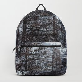 The Winter Path Forest (Color) Backpack
