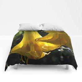 Backlit Datura Comforters