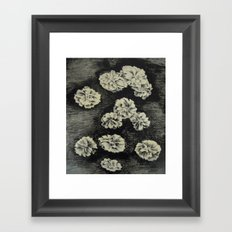 Flowers - lithography Framed Art Print