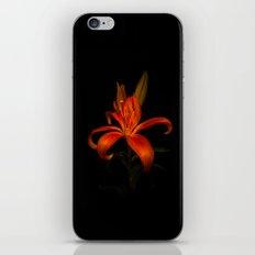 Orange Lily iPhone & iPod Skin