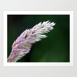 Simple(ly) Beautiful (Green and Purple Plant Flower Leaf) Art Print