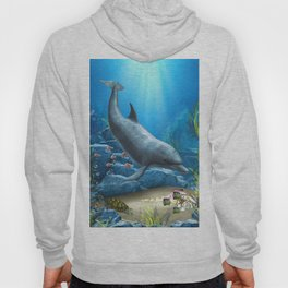 The World Of The Dolphin Hoody