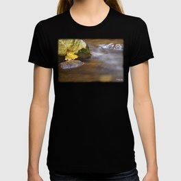 Trapped Leaf T-shirt